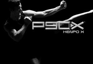 Kenpo Dövüş Sanatı (Kenpo X)
