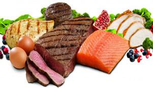 Protein Mevzuu