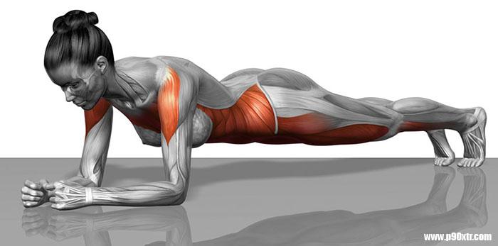 Plank Pozisyonu