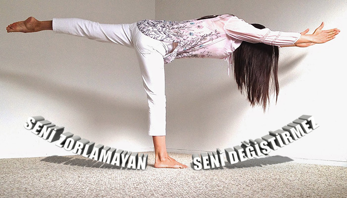 Yoga Warrior 3