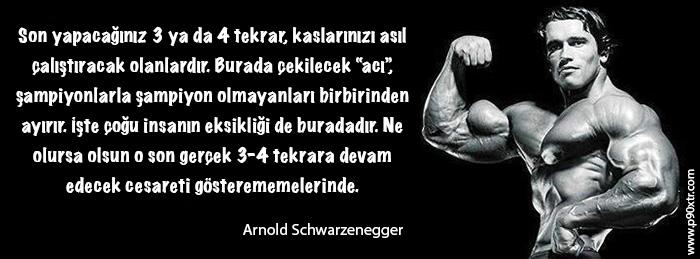 Arnold Soz